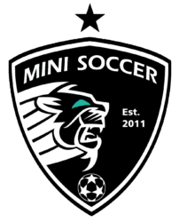 Mini Soccer School